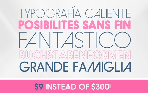 Best Deal: Hiruko, Japanese Inspired Font Family - only $9!