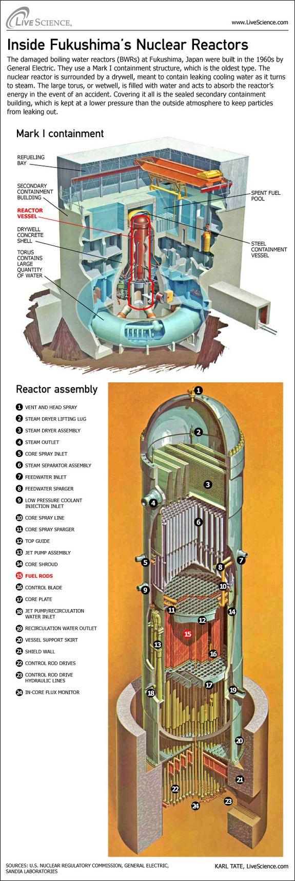 Inside Fukushima Reactor Infographic