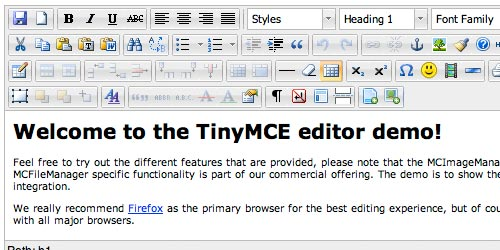 Rich Text Editor - TinyMCE