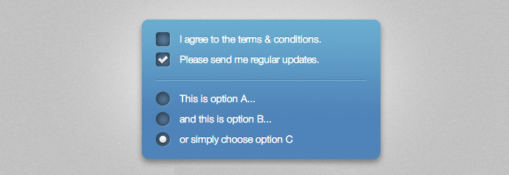 Fancy Checkboxes and Radio Buttons