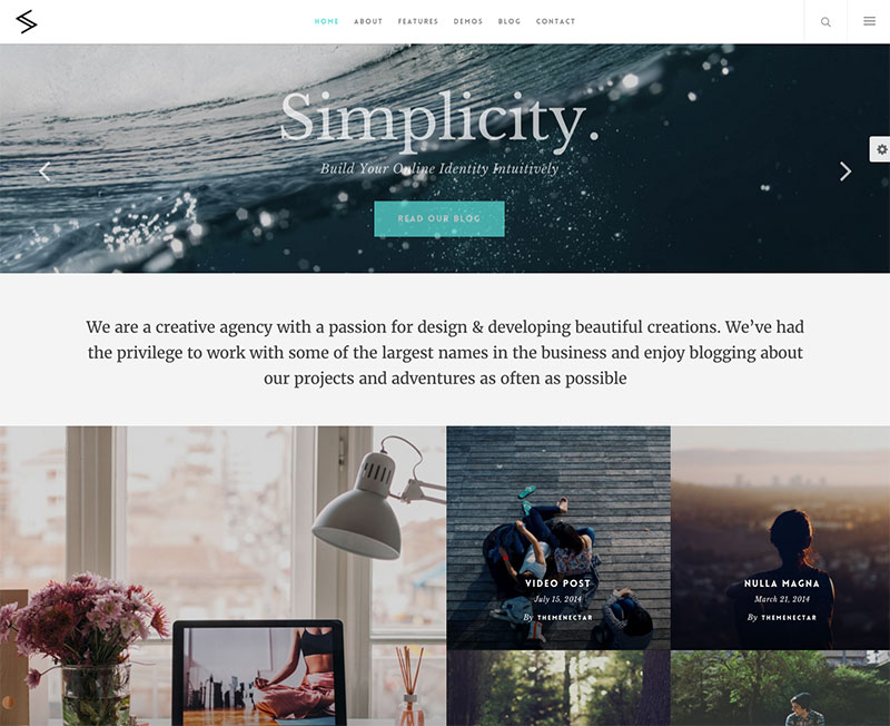 WordPress Theme - Salient