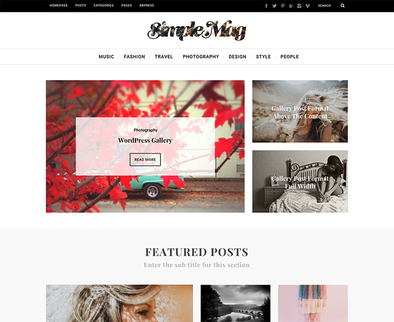 WordPress Theme - SimpleMag